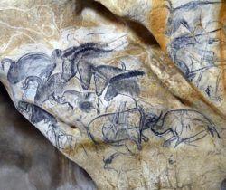 Grotte Chauvet 2 - Panneau des chevaux - Copyright SYCPA